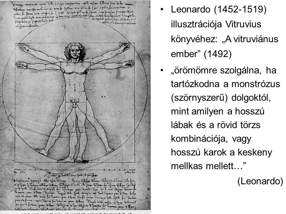 """Leonardo (1452-1519) illusztrációja Vitruvius könyvéhez: """"A vitruviánus ember (1492)"""
