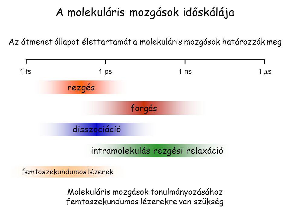 A molekuláris mozgások időskálája