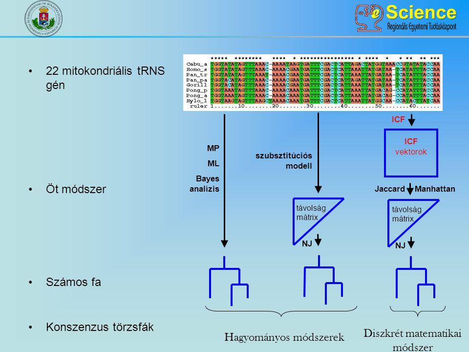 22 mitokondriális tRNS gén