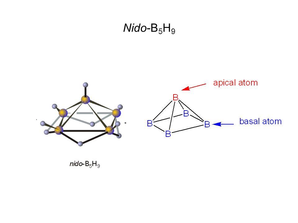 Nido-B5H9