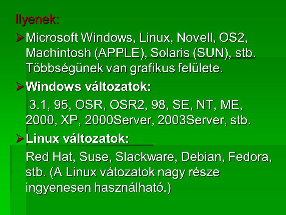 Ilyenek: Microsoft Windows, Linux, Novell, OS2, Machintosh (APPLE), Solaris (SUN), stb. Többségünek van grafikus felülete.