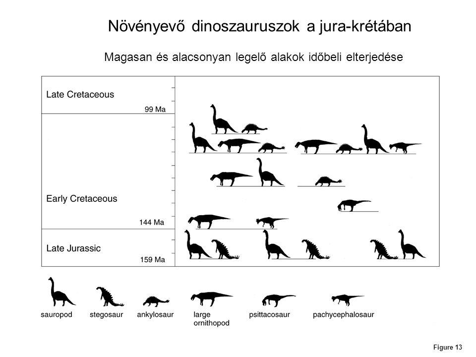 Növényevő dinoszauruszok a jura-krétában