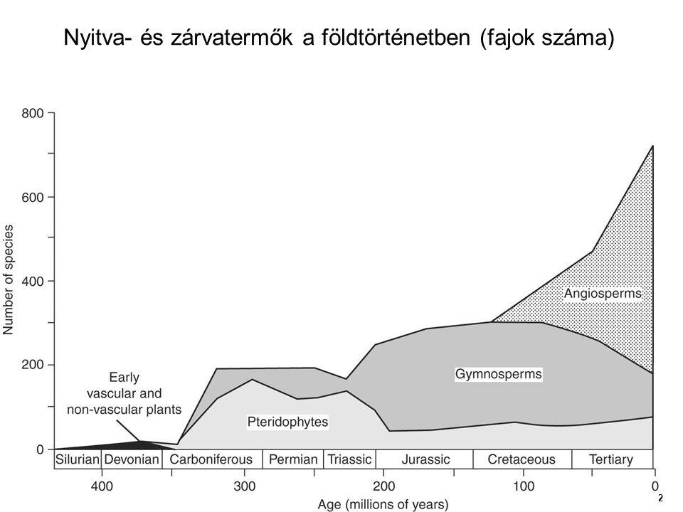 Nyitva- és zárvatermők a földtörténetben (fajok száma)