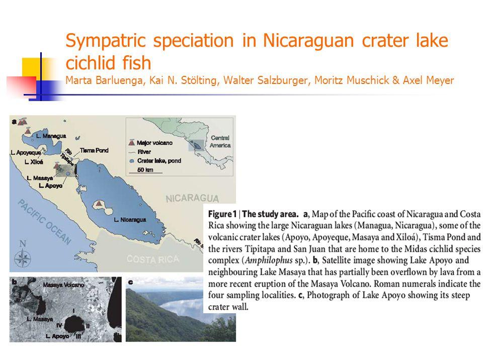 Sympatric speciation in Nicaraguan crater lake cichlid fish Marta Barluenga, Kai N.
