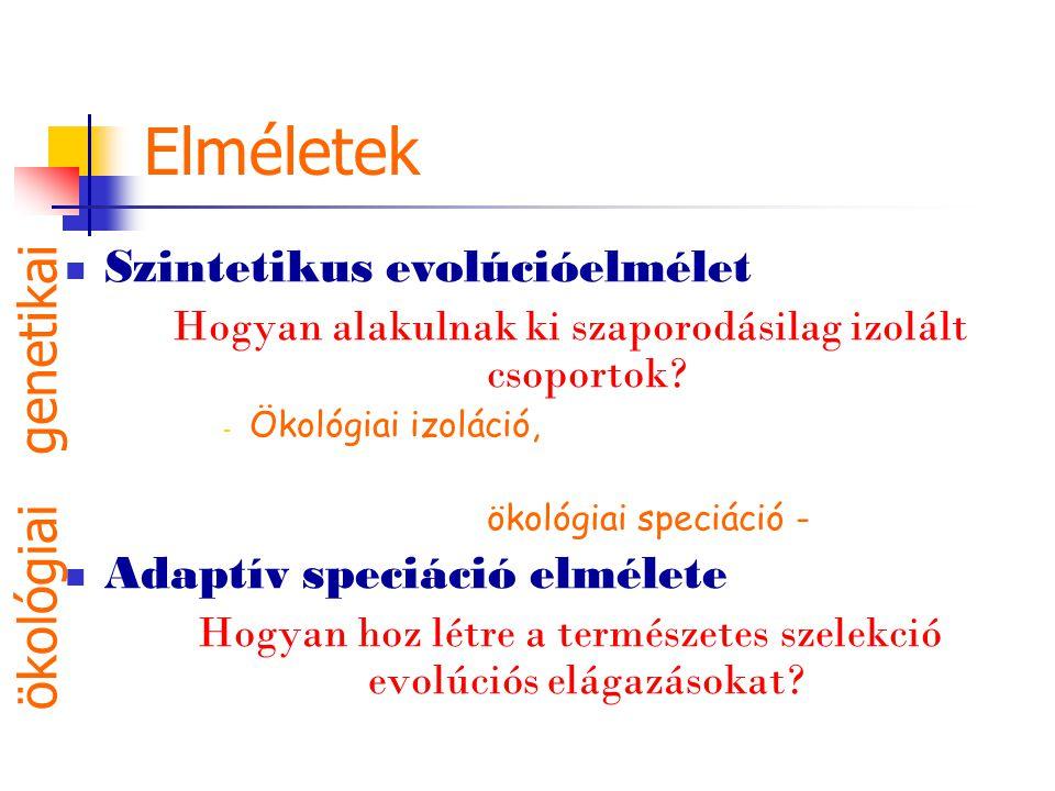 Elméletek genetikai ökológiai Szintetikus evolúcióelmélet