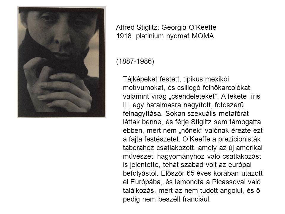 Alfred Stiglitz: Georgia O'Keeffe 1918. platinium nyomat MOMA
