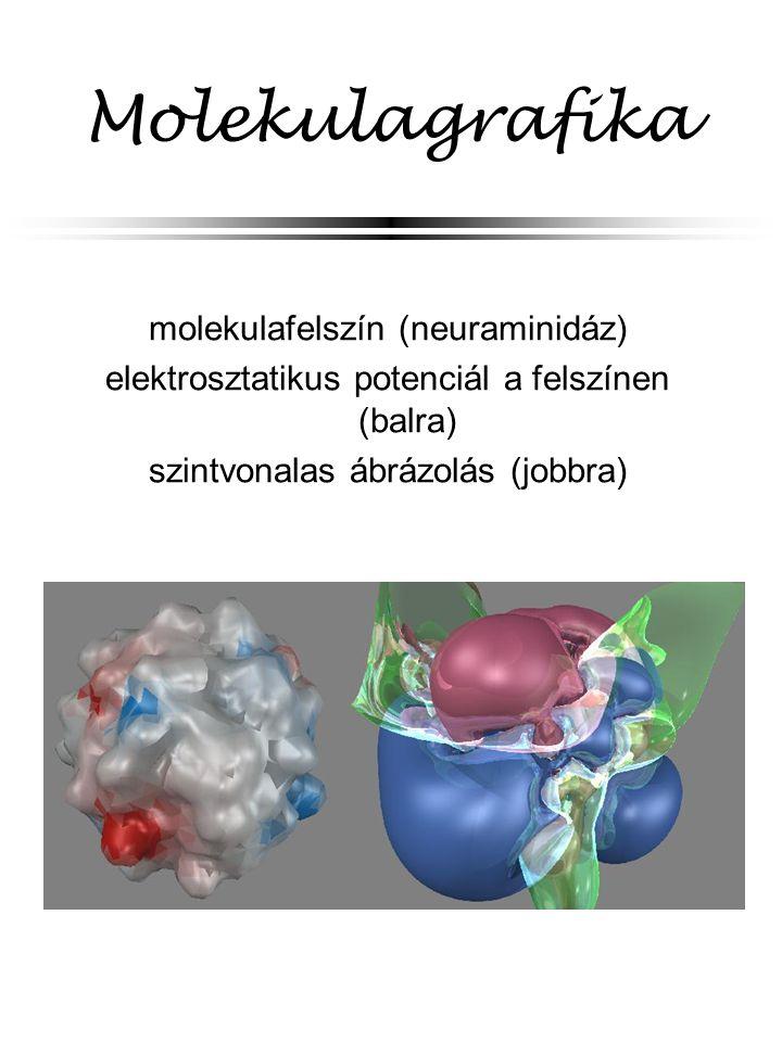 Molekulagrafika molekulafelszín (neuraminidáz)