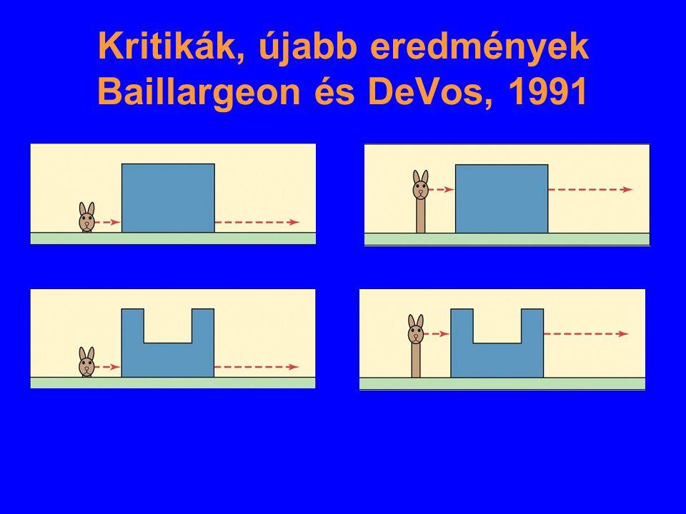 Kritikák, újabb eredmények Baillargeon és DeVos, 1991