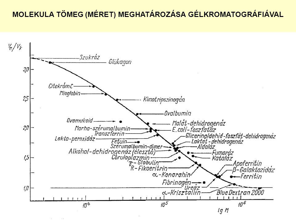 MOLEKULA TÖMEG (MÉRET) MEGHATÁROZÁSA GÉLKROMATOGRÁFIÁVAL