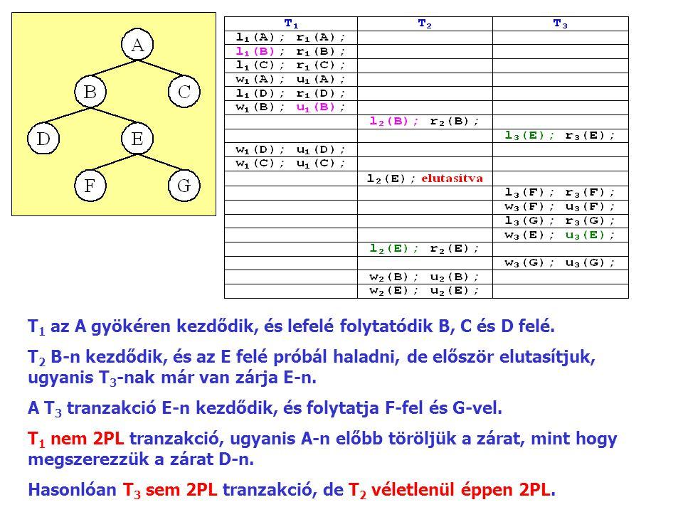 T1 az A gyökéren kezdődik, és lefelé folytatódik B, C és D felé.