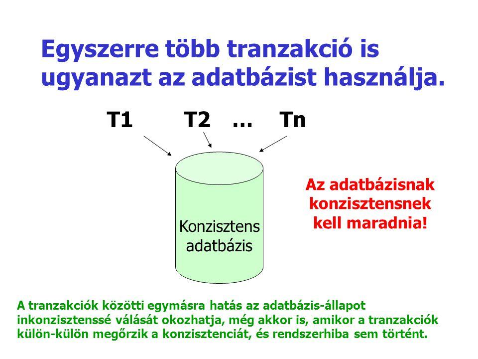 Egyszerre több tranzakció is ugyanazt az adatbázist használja.