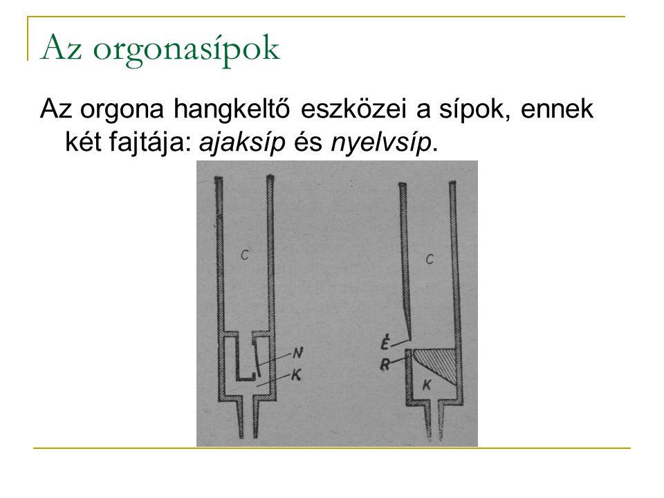 Az orgonasípok Az orgona hangkeltő eszközei a sípok, ennek két fajtája: ajaksíp és nyelvsíp.