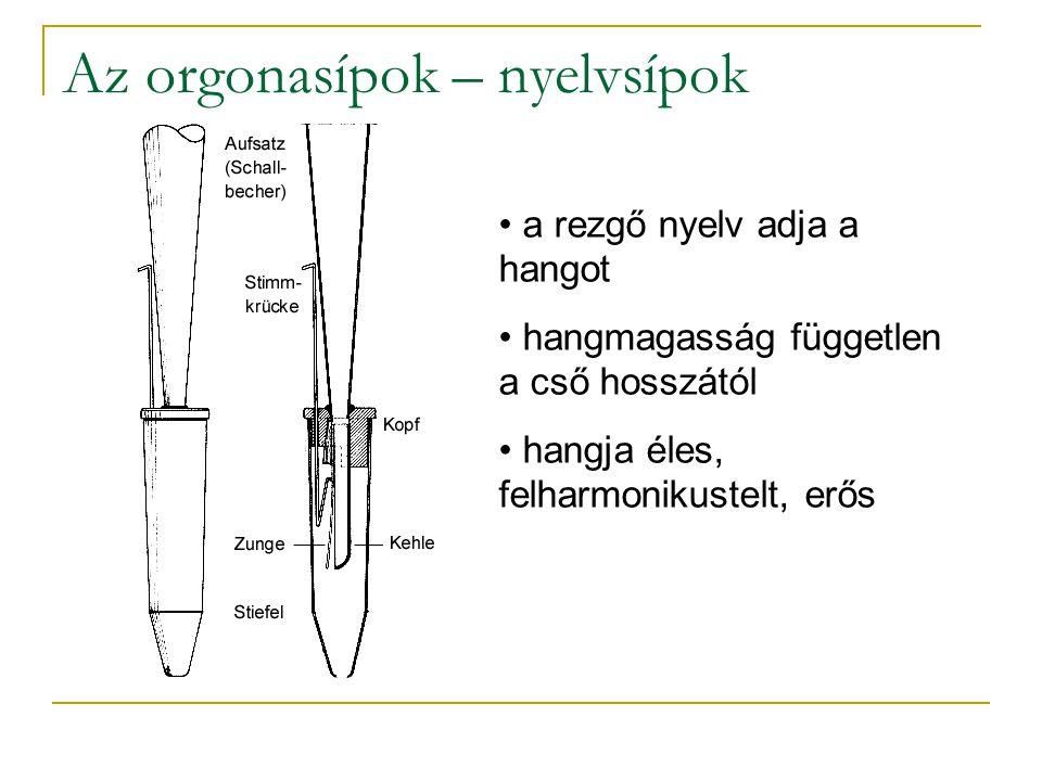 Az orgonasípok – nyelvsípok