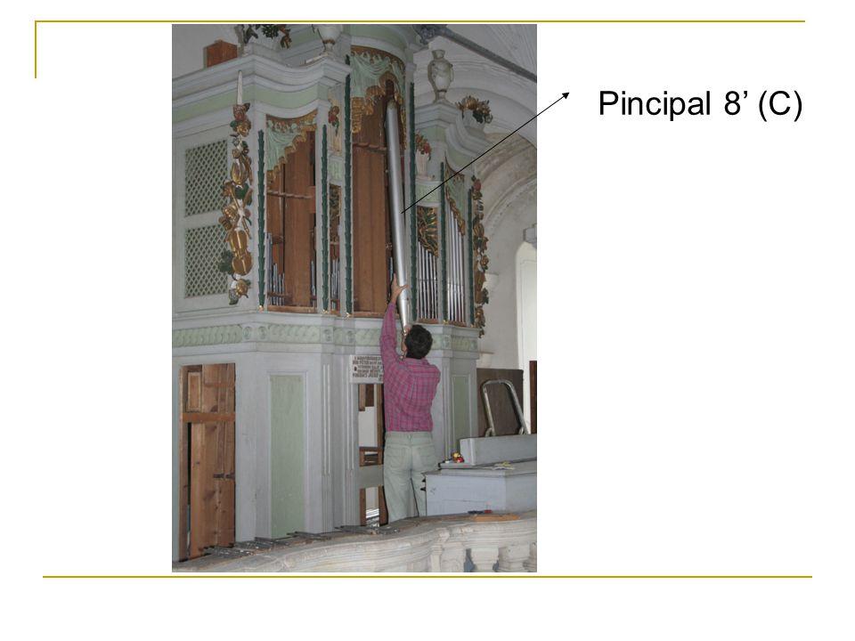Pincipal 8' (C)