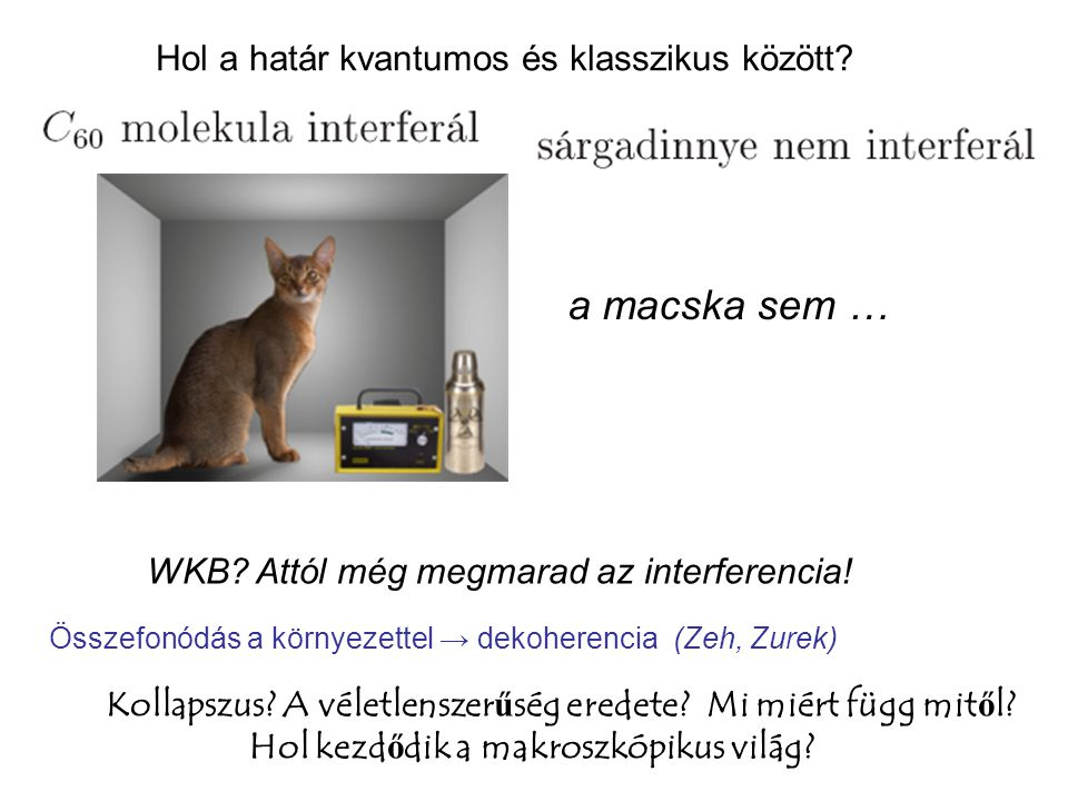 a macska sem … Hol a határ kvantumos és klasszikus között