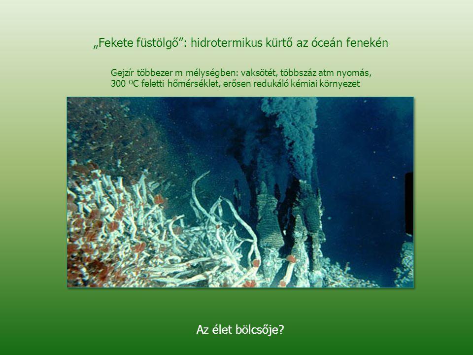 """""""Fekete füstölgő : hidrotermikus kürtő az óceán fenekén"""