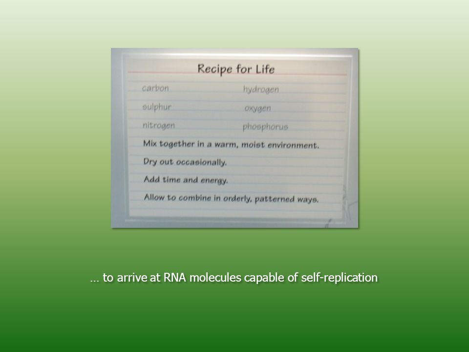 … to arrive at RNA molecules capable of self-replication