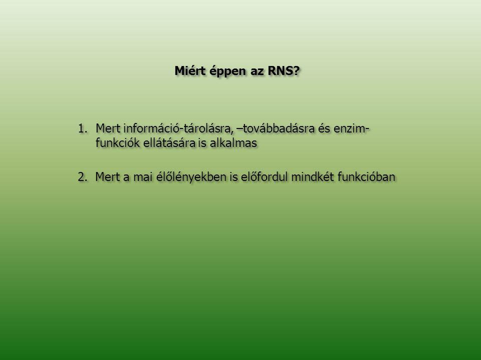 Miért éppen az RNS Mert információ-tárolásra, –továbbadásra és enzim- funkciók ellátására is alkalmas.
