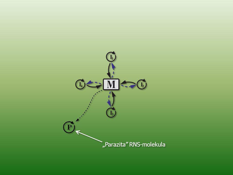"""Parazita RNS-molekula"