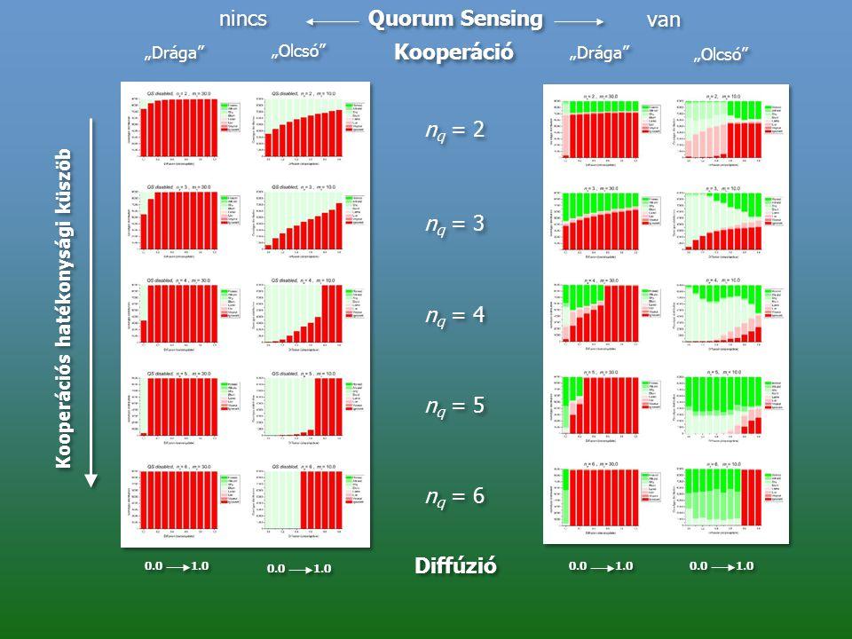 nincs Quorum Sensing van Kooperáció nq = 2 nq = 3 nq = 4 nq = 5 nq = 6