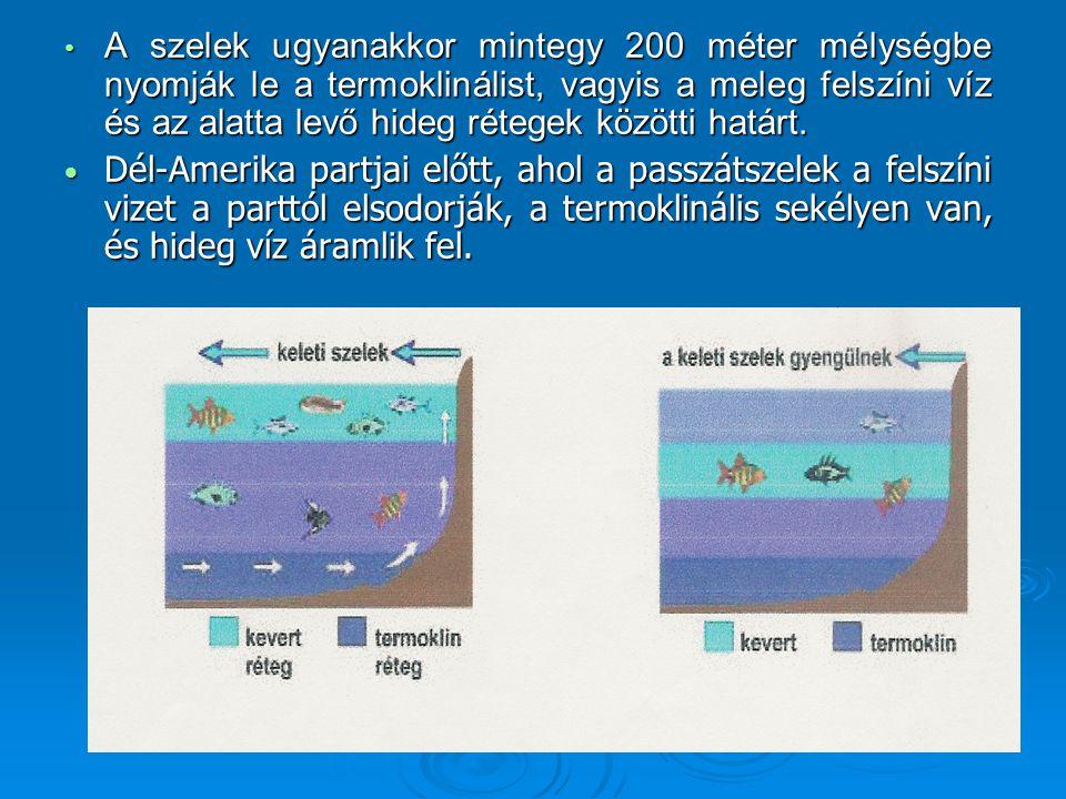 A szelek ugyanakkor mintegy 200 méter mélységbe nyomják le a termoklinálist, vagyis a meleg felszíni víz és az alatta levő hideg rétegek közötti határt.