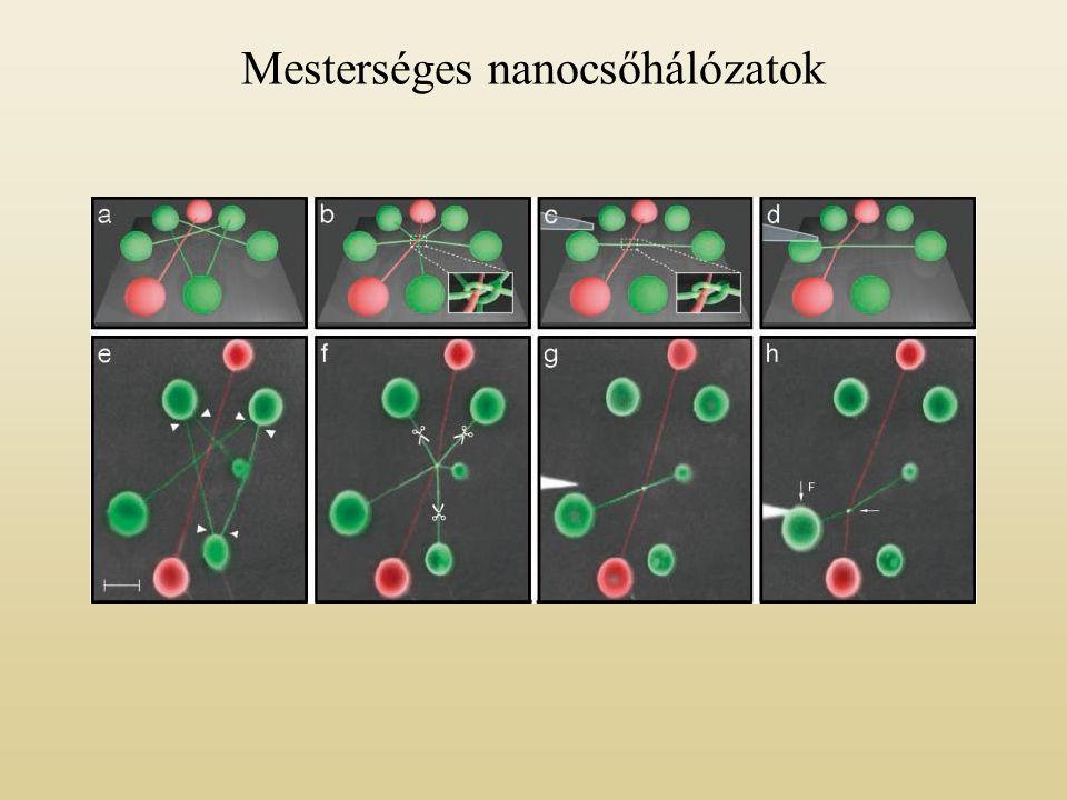 Mesterséges nanocsőhálózatok
