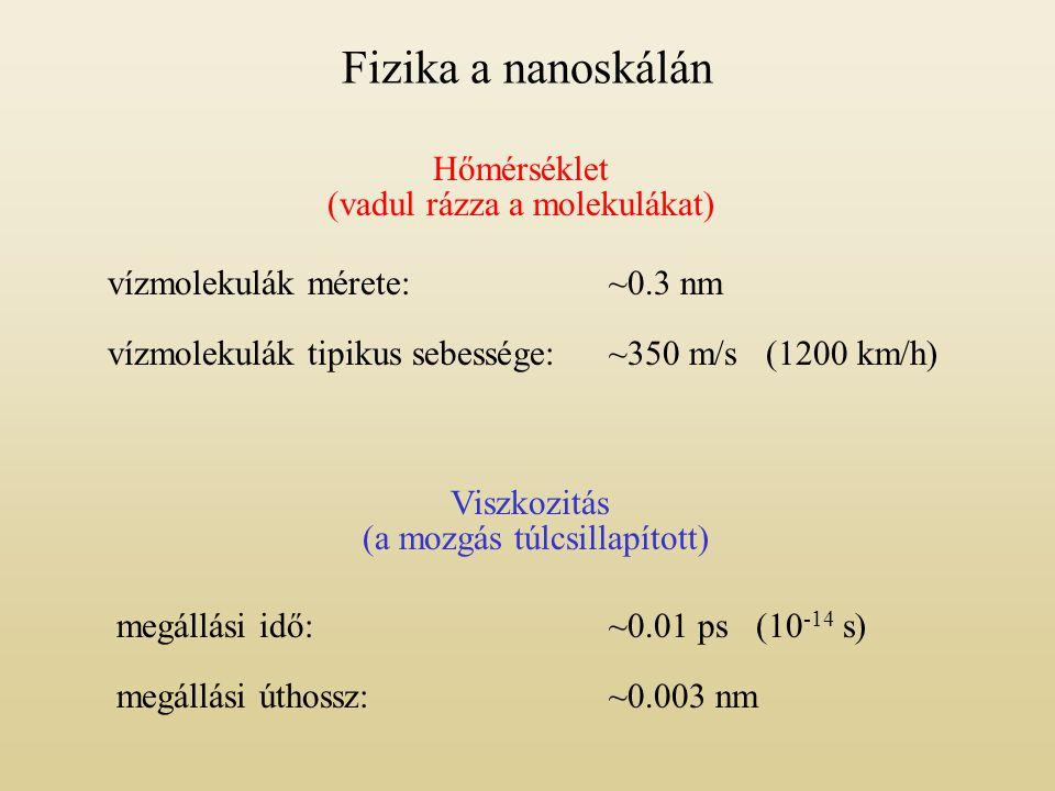 Fizika a nanoskálán Hőmérséklet (vadul rázza a molekulákat)