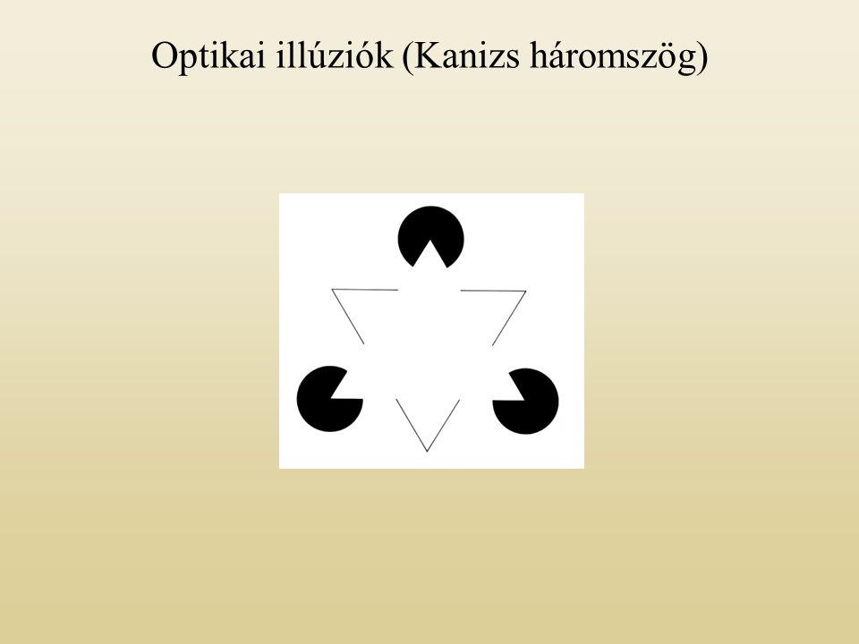 Optikai illúziók (Kanizs háromszög)
