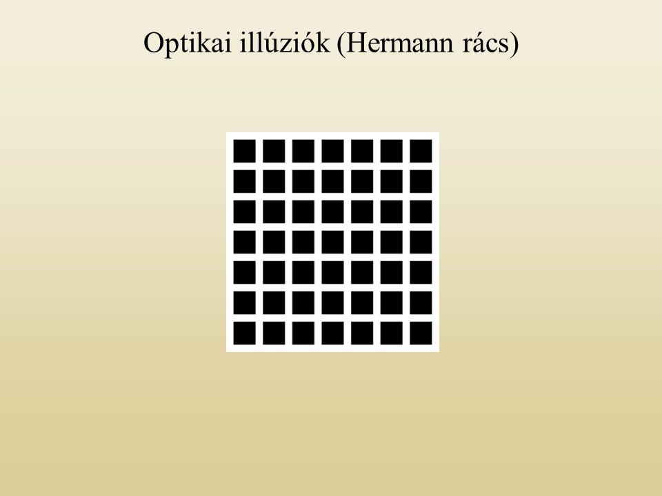 Optikai illúziók (Hermann rács)