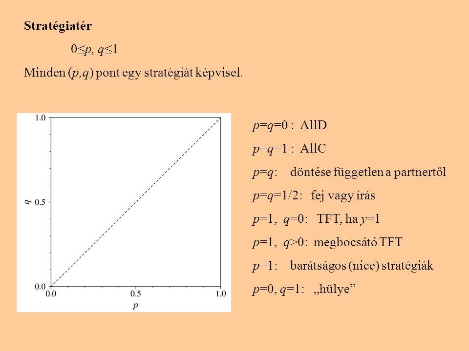 Stratégiatér 0≤p, q≤1. Minden (p,q) pont egy stratégiát képvisel. p=q=0 : AllD. p=q=1 : AllC. p=q: döntése független a partnertől.