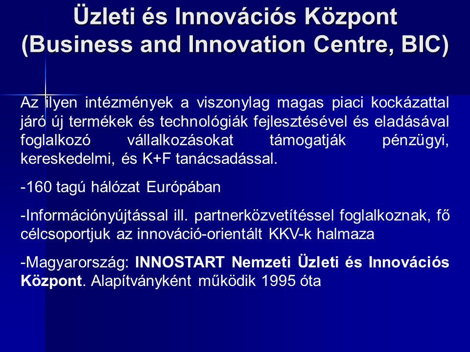 Üzleti és Innovációs Központ (Business and Innovation Centre, BIC)