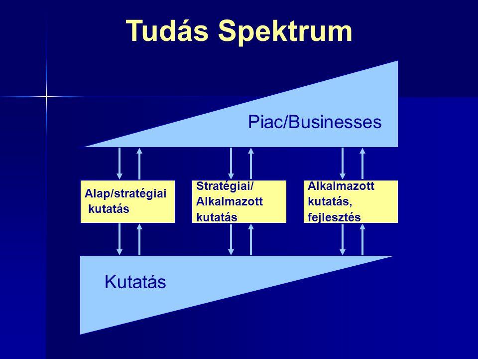 Tudás Spektrum Piac/Businesses Kutatás Alap/stratégiai kutatás