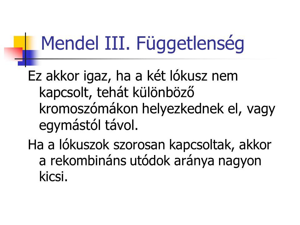 Mendel III. Függetlenség