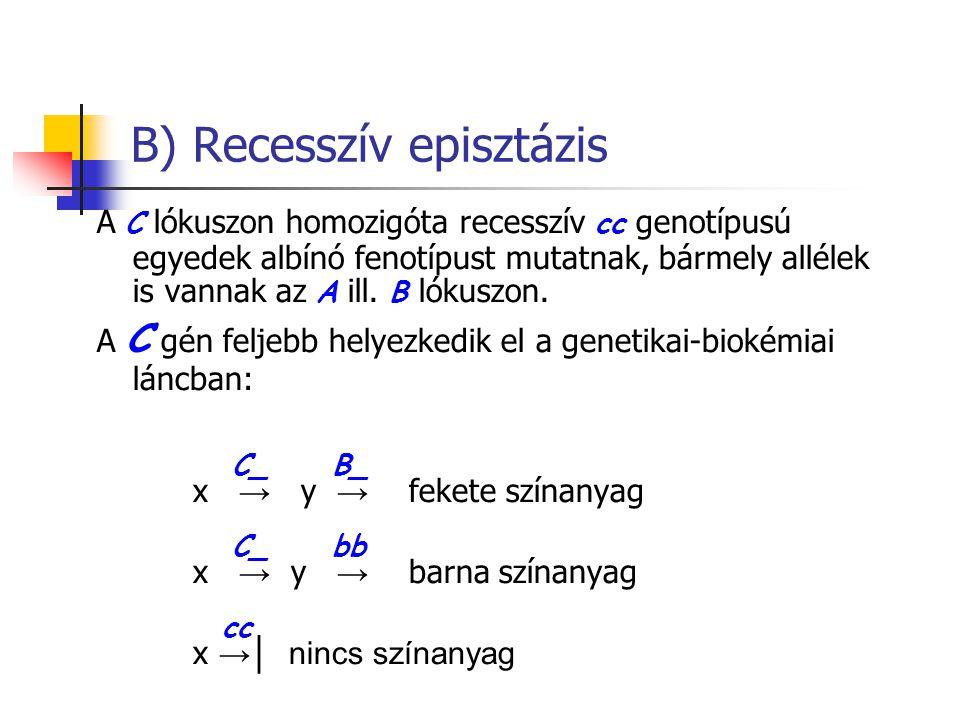B) Recesszív episztázis