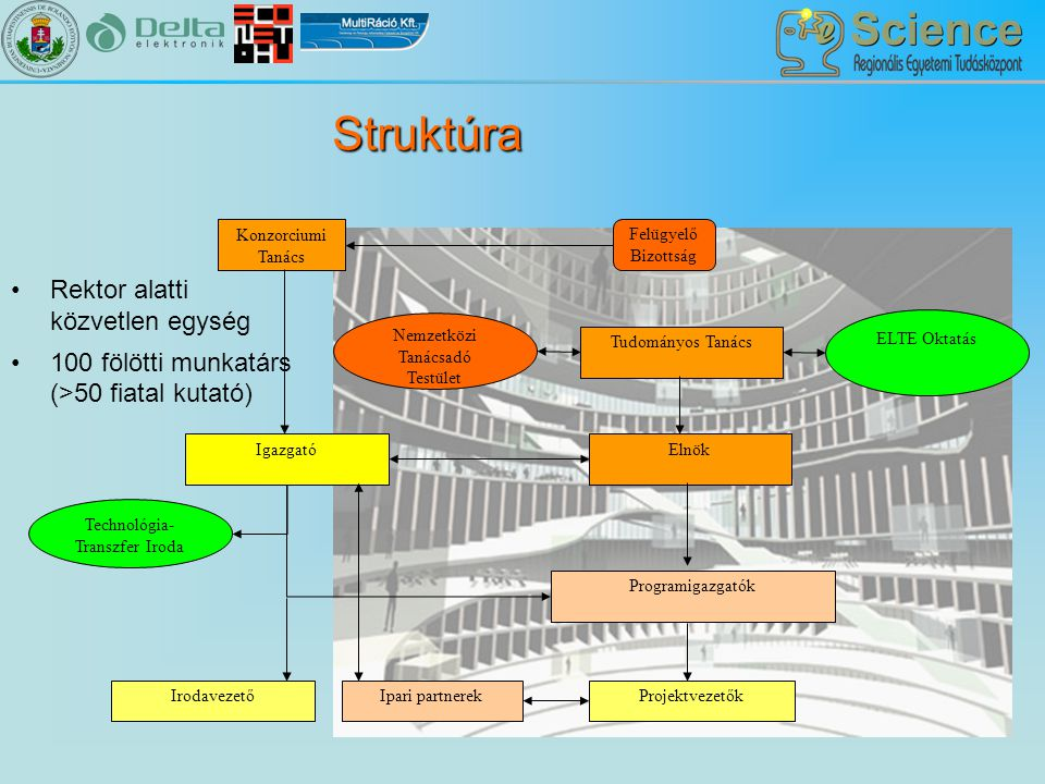 Struktúra Rektor alatti közvetlen egység