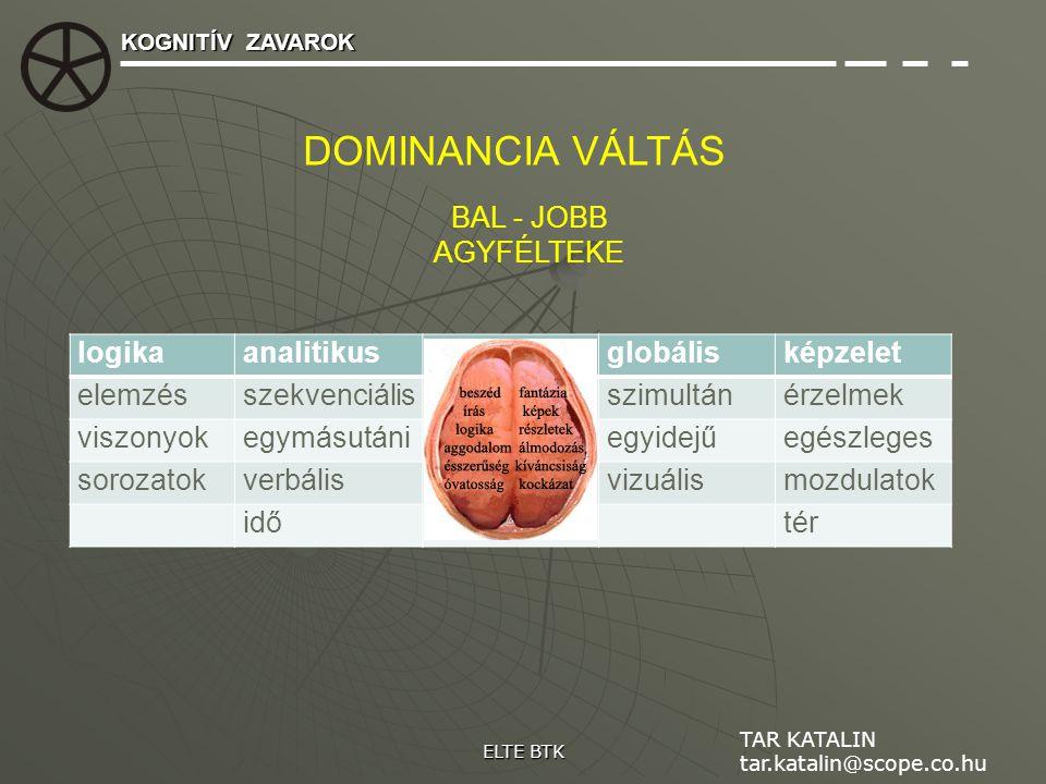 DOMINANCIA VÁLTÁS BAL - JOBB AGYFÉLTEKE logika analitikus globális