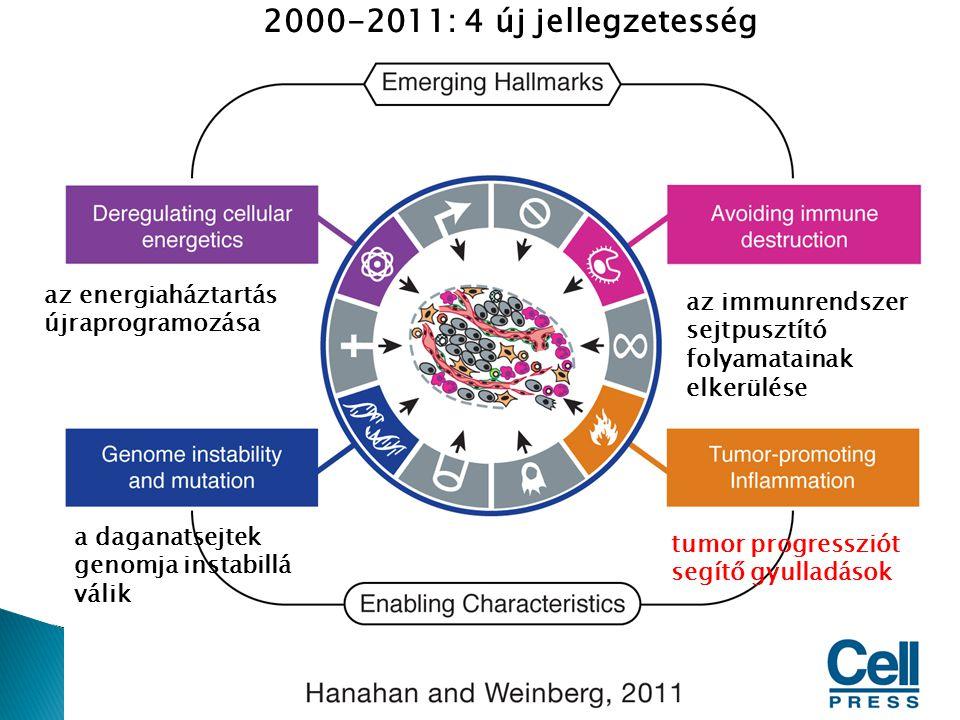 2000-2011: 4 új jellegzetesség az energiaháztartás újraprogramozása