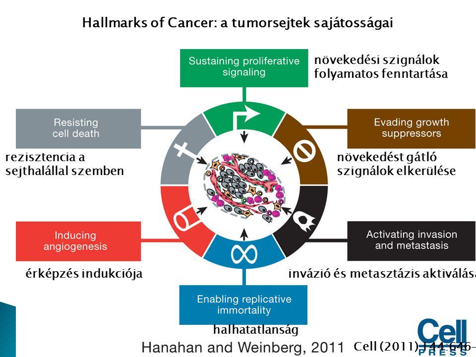 Hallmarks of Cancer: a tumorsejtek sajátosságai