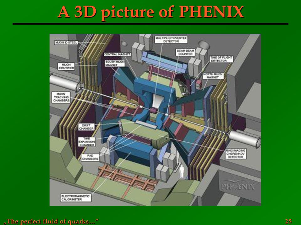 A 3D picture of PHENIX