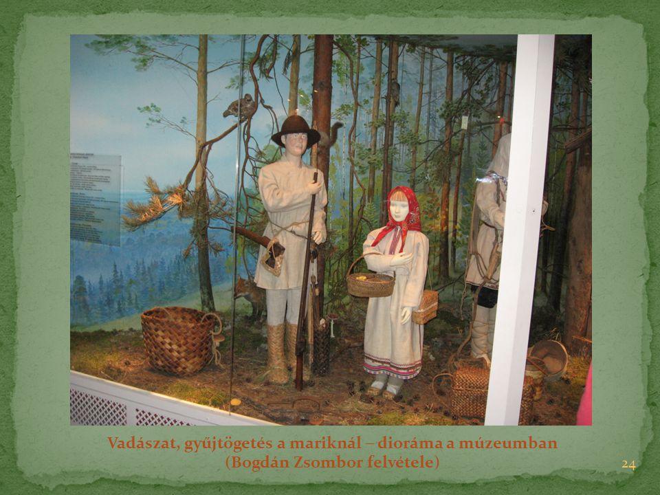 Vadászat, gyűjtögetés a mariknál  dioráma a múzeumban