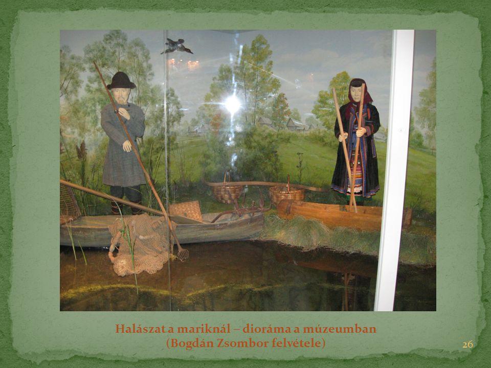 Halászat a mariknál  dioráma a múzeumban (Bogdán Zsombor felvétele)