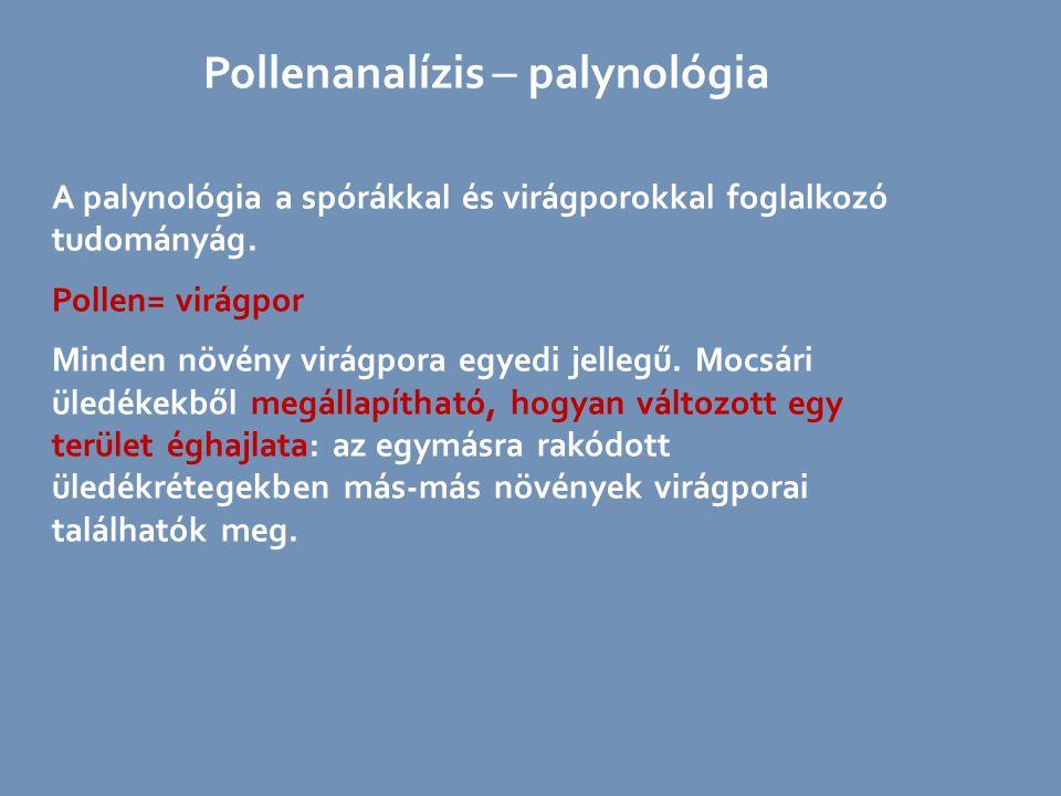 Pollenanalízis  palynológia