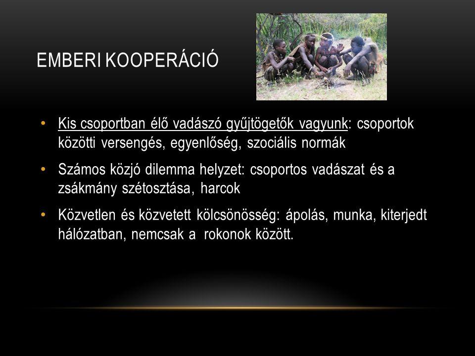 Emberi kooperáció Kis csoportban élő vadászó gyűjtögetők vagyunk: csoportok közötti versengés, egyenlőség, szociális normák.