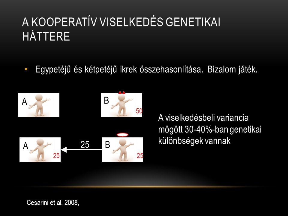 A kooperatív viselkedés genetikai háttere