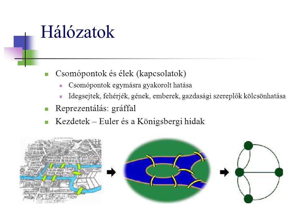 Hálózatok Csomópontok és élek (kapcsolatok) Reprezentálás: gráffal