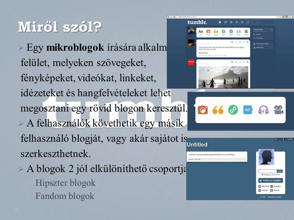 Miről szól Egy mikroblogok írására alkalmas