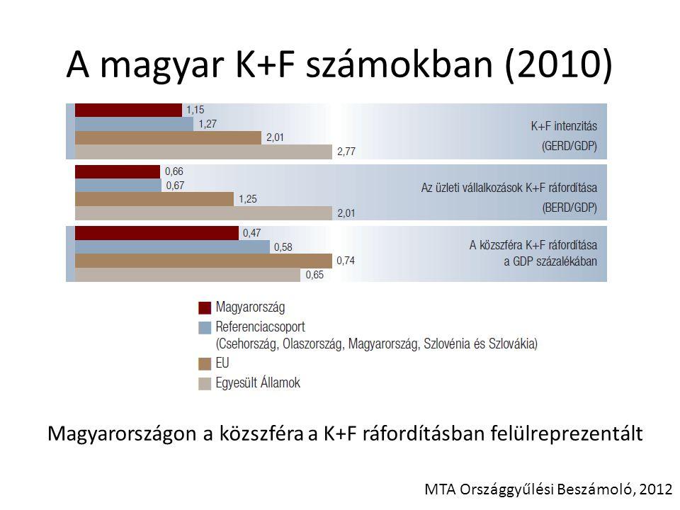 A magyar K+F számokban (2010)