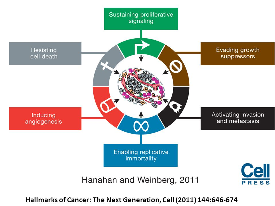 Hallmarks of Cancer: The Next Generation, Cell (2011) 144:646-674