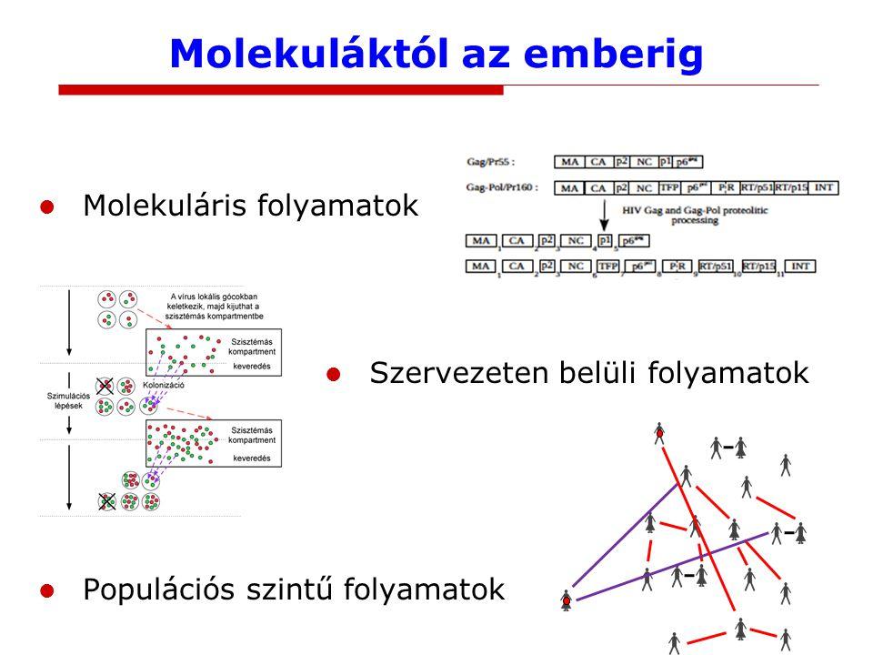 Molekuláktól az emberig