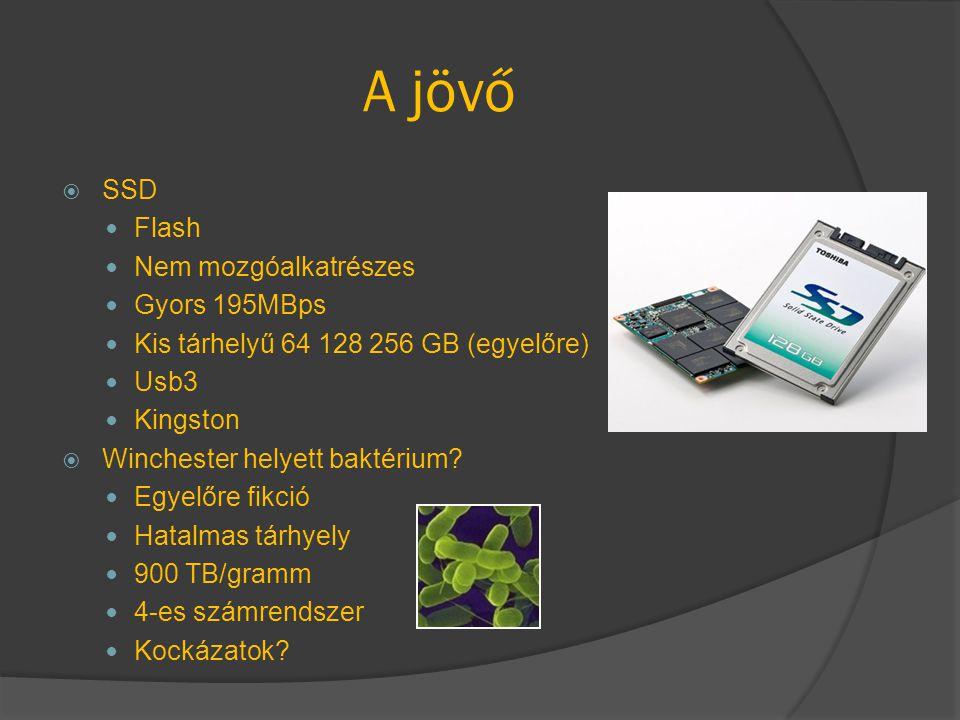 A jövő SSD Flash Nem mozgóalkatrészes Gyors 195MBps